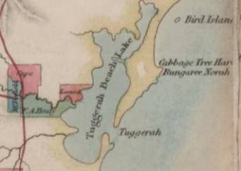 Map of Cabbage Tree Bay and Bungaree Norah - from Map of the Colony of NSW by Robert Dixon - National Library Australia