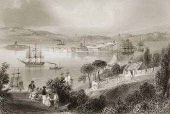 Cove of Cork